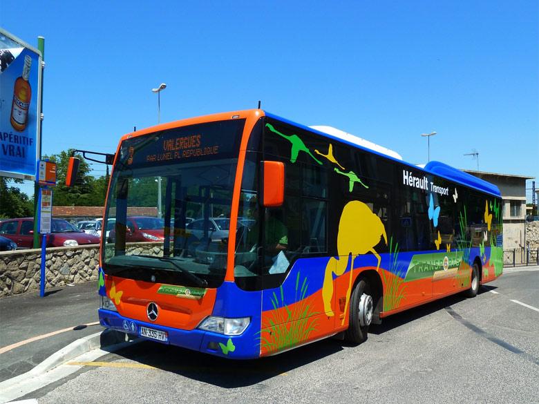trans 39 bus actualit s photo du mois juillet 2010. Black Bedroom Furniture Sets. Home Design Ideas