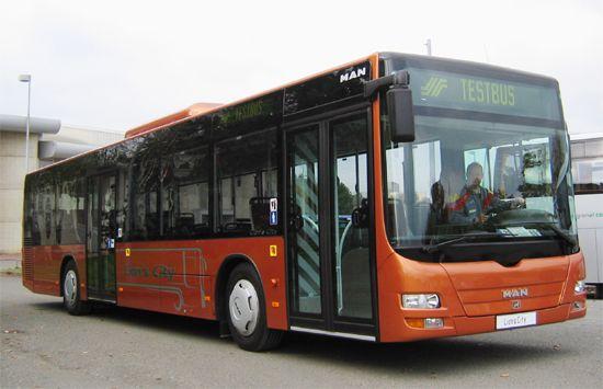 TRANS'BUS - Autobus standard : MAN Lion's City