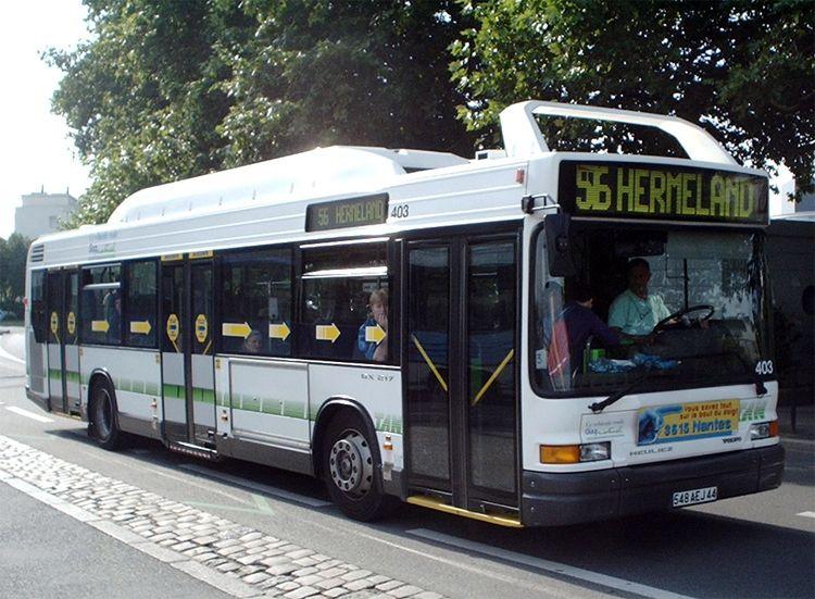 TRANS'BUS - Photothèque autobus : MERCEDES CITARO ...
