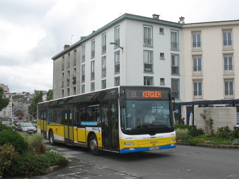 trans 39 bus phototh que autobus man lion 39 s city bibus brest. Black Bedroom Furniture Sets. Home Design Ideas
